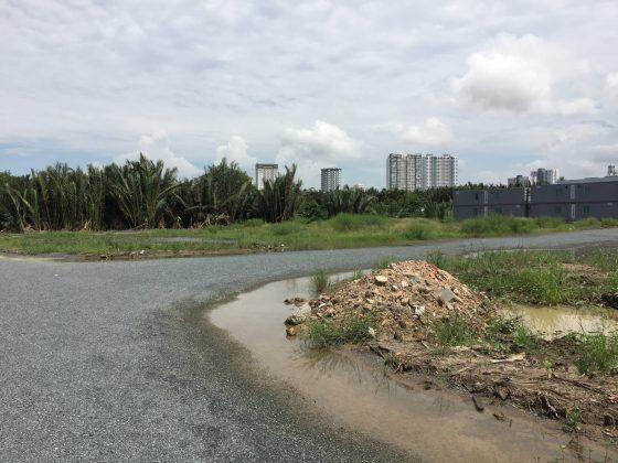 dừa dự án Biệt Thự Hưng Phát Green Star