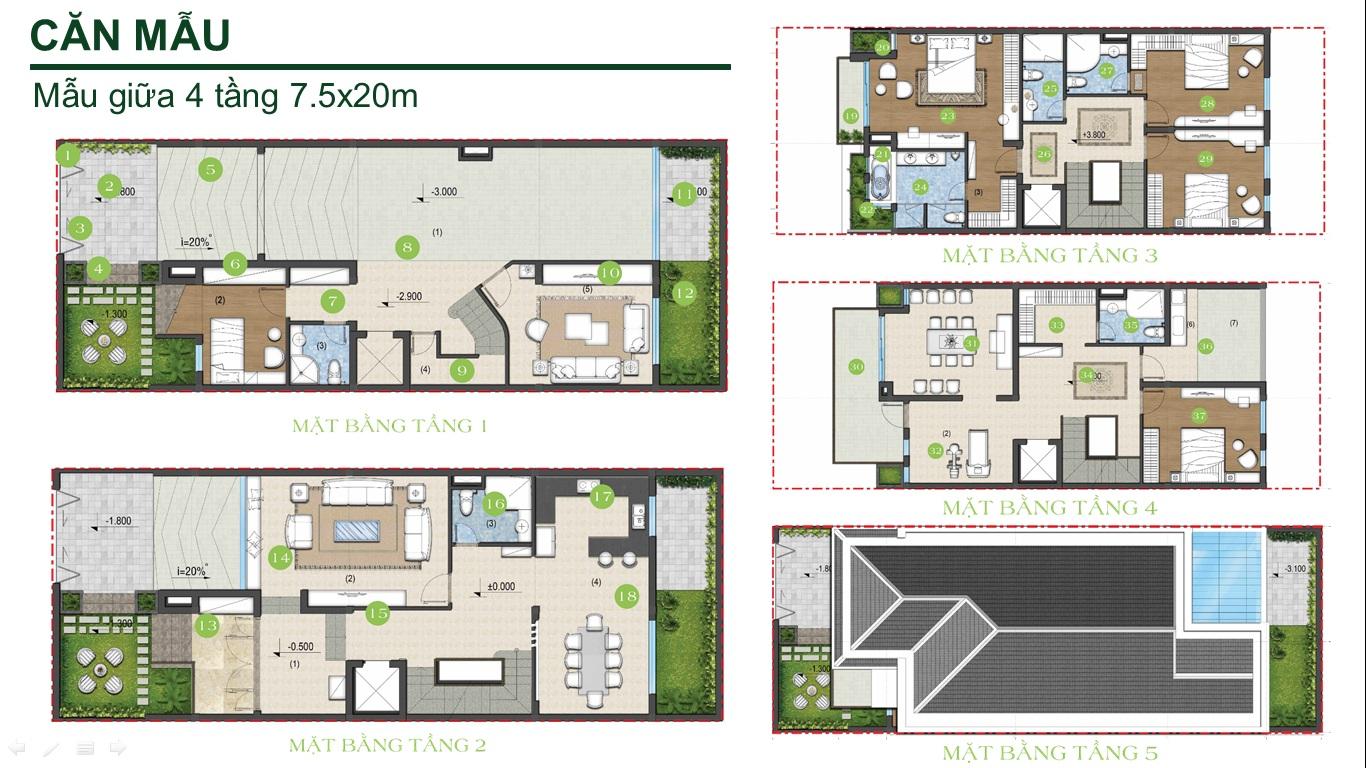 Thiết kế biệt thự Green Star Quận 7 (7.5x20)